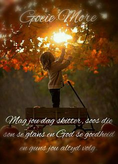 Goeie more Good Night Quotes, Good Morning Good Night, Good Morning Wishes, Lekker Dag, Evening Greetings, Goeie Nag, Goeie More, Afrikaans Quotes, Special Quotes