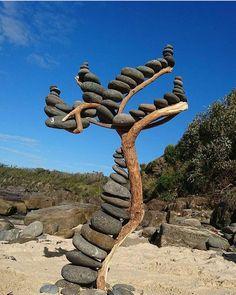 dry tree exterior idea