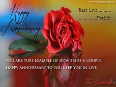 Find the best collection of Anniversary Wishes For Couple to make them never forget this day. Share an emotional and sincere Anniversary Wishes For Couple images would surely make the day special for your loved ones. Marriage Anniversary Quotes, Anniversary Wishes For Couple, Anniversary Pictures, Happy Anniversary, Anniversary Cards, Rose Images, Rachel Weisz, Beautiful Roses, Special Day