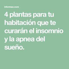 4 plantas para tu habitación que te curarán el insomnio y la apnea del sueño.
