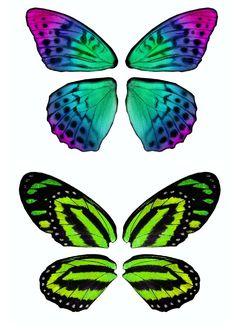 Psd detail fantasy fairy wings official psds useful - Plantillas de mariposas ...