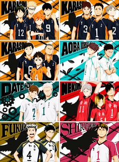 HAIKYUU!! Crows, Aoba (idk what their mascot is xD), wall (? What even...), cats, owls, eagle.