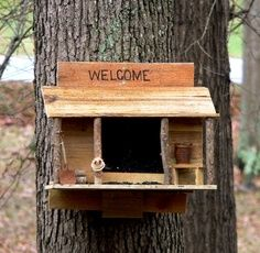 how to build a squirrel trap out of wood