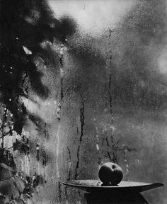 Resultado de imagem para josef sudek still life photography