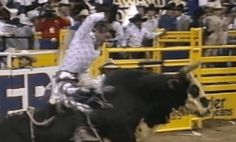 tuff hedeman tribute to lane frost rides extra for his pal