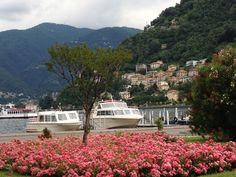 Lake Como in the spring - taken from Piazza Cavour ~ Como, Italy