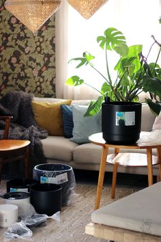 Black Orthex Paulina flower pots are made of 100% recycled material