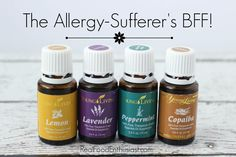 Suffer from allergies. Use Young Living essential oils to help.   https://www.facebook.com/stacysyounglivingessentialoils