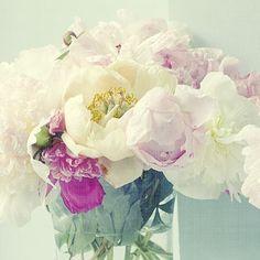 Peony Wall Decor, Flower  Still Life Photograph,  Floral Art Print, Flower Photography