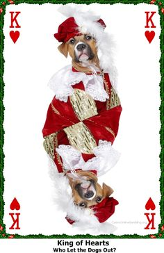 Christmas King of Hearts at Casino Online Gambling