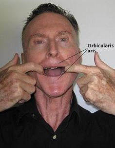 This facial exercise will tone up and strengthen the muscles surrounding the mouth. It will also decrease the depth of the nasolabial and marionette lines. Facial Muscle Exercises, Face Yoga Exercises, Facial Muscles, Lines Around Mouth, Tai Chi Qigong, Nasolabial Folds, Muscular Strength, Pool Workout, Beauty Tips For Face