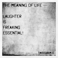 laughter is essential