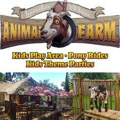 Lavender Moon Animal Farm is the perfect venue to host parties for young and old, and caters for the whole family. Lavender Moon is the ideal venue for kids themed birthday parties, adult birthday parties, baby showers, kitchen teas, year-end functions and Christmas parties.
