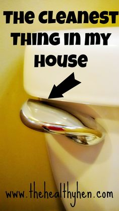 The flushing mechanism has to be the cleanest thing in my house! Check out this pin!