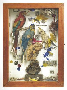 One of my favorite artists is Joseph Cornell , a collage and assemblage artist from the who worked with found papers and constructed . Collages, 3d Collage, Surreal Collage, Collage Artwork, Collage Artists, Arte Assemblage, Joseph Cornell Boxes, Wal Art, Art Perle