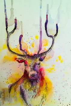 Watercolour and ink stag