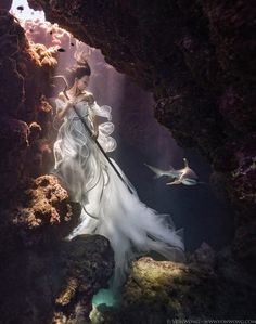 Von Wong had an incredible photo shoot underwater with model Amber Bourke and live sharks to raise awareness about conservation.