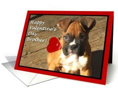 Happy Valentine's Day Brother Boxer Puppy card #valentines #cards #boxer #dog #card