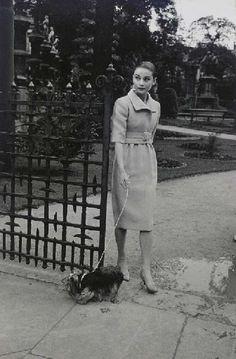 Audrey Hepburn walking her Yorkie, Mr. Famous in Rome, Italy 1959