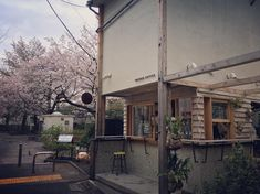 Tokyo's upscale but artsy and alternative neighborhood Naka-meguro is the ideal place to get out and explore.