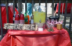 "country sweet 16 party ideas | variety of sodas and lemonade were available at ""the watering hole ..."