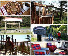 Trip Guide The North Beach Of Washington Coast Spring Resort