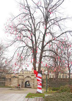 """Видин /КРОСС/ Младежи от Видин наредиха жива мартеница на централния площад в града и по този начин се включиха в инициативата """"Честита Баба Марта, Bulgaria"""