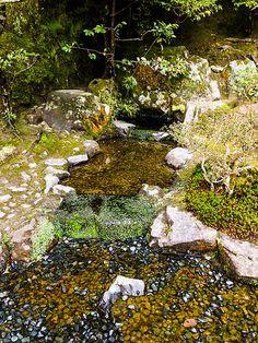 Gingakuji japanese Garden