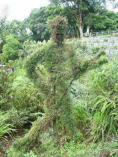 árbol rockero