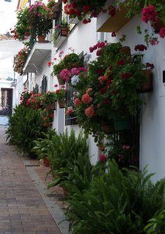 Calleja de las flores in Benalmádena, Spain #travel