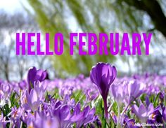 Free Image on Pixabay - Flowers, Crocus, Spring, Park Yellow Crocus, Yellow Flowers, Spring Flowers, Orchid Wallpaper, Wall Art Wallpaper, Joseph Smith, Days And Months, Months In A Year, Winter Months