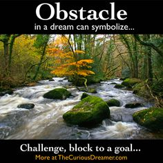 An obstacle in a dream can represent...   More at TheCuriousDreamer.com... #dreammeaning #dreamsymbol