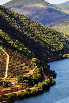 Explore the nearby Douro River. Six Senses Douro Valley (Lamego, Portugal) - Jetsetter