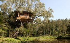 Treehouse at Elephant Valley in Tamil Nadu, Southern India