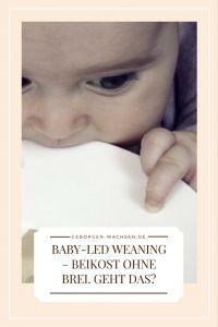 Baby-Led Weaning - Beikost ohne Brei. Geht das? - Geborgen Wachsen