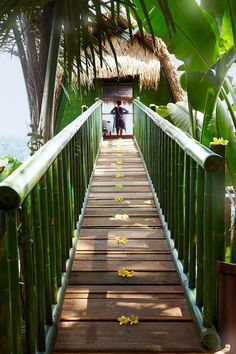 Mango Tree Spa by L'Occitane Ubud Bali Expensive...but might be nice for a treat! Special price on web page