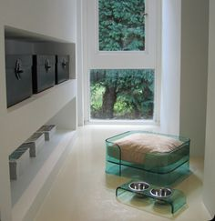 Dog bed & dining table ...