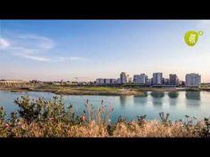 Die Entstehung des Seeparks in aspern - YouTube