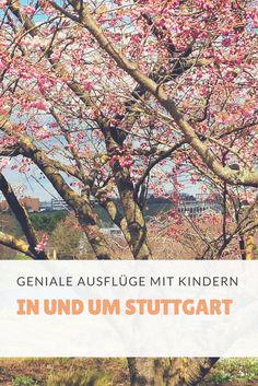 Kleinere und größere Ausflüge mit Kindern rund um Stuttgart. Enjoy!