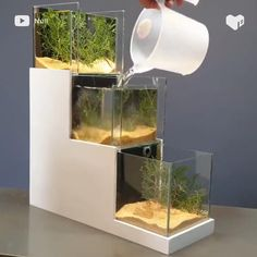 Making a 3 Layer Aquarium - 3 layer aquarium?