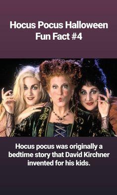 Hocus Pocus Halloween Fun Facts, Halloween Treats, Halloween House, Halloween Night, Black Cat Adoption, Offering Prayer, Celtic Festival, A Child Is Born, William Shatner