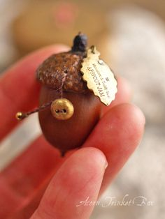 trinket box made from an acorn Autumn Crafts, Nature Crafts, Fun Crafts, Diy And Crafts, Arts And Crafts, Acorn Crafts, Christmas Crafts, Christmas Ornaments, Shell Crafts