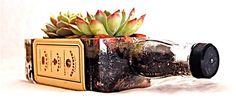 repurposed jack daniels bottle | Jack Daniels Whiskey Bottle Garden Planter for Succulents. $16.95, via ...