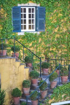 Quinta de Sant'Ana Wedding Weekend, Stairs, Outdoor Structures, Wine, Decor, Photo Dream, Wedding Shot, Lisbon, Dreams