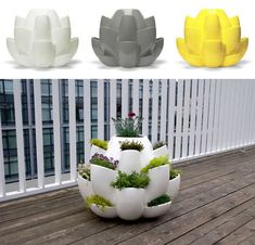 This Just Inbox: One planter for many plants - Core77