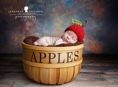 Jeneanne Ericsson Photography » » apple basket