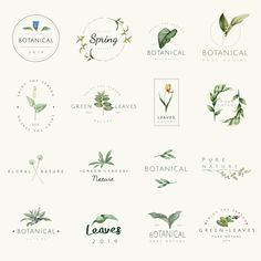 Set of nature and plant logo vectors premium image by busbus Plant Aesthetic, Aesthetic Drawing, Shop Logo, Logo Internet, Logo Abstrait, Logo Fleur, Avocado Plant, Plant Logos, Restaurant Logo
