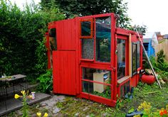 allotment shed in Glasgow
