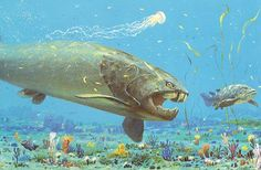 The Silurian Period was from 443.7 to 416 million years ago. This was also the very first appearance of Coral. This was also a time where there was a remarkable evolution of fish.