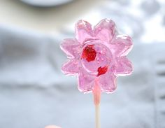 How to make homemade organic lollipops! I think yes... :)